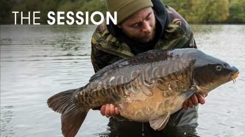 Myles Gibson | The Session | Dinton Black Swan