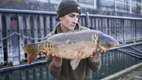 Jacob Worth   A Day In The Life   London Carper