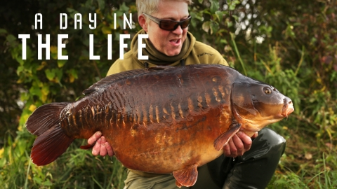 Little England | Nick Helleur | A Day In The Life